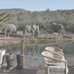 Südafrika Barefoot Lodge
